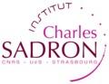 Logo ics.tif