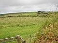 Looking towards Condolden Farm - geograph.org.uk - 495375.jpg