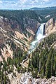 Lower Falls 3388.jpg