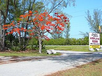 Lower Sugarloaf Key - Road to Sugarloaf Airport