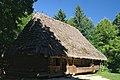 Lviv Szewczenkiw Hay khata z Oriawczyk SAM 2740 46-101-2021.JPG