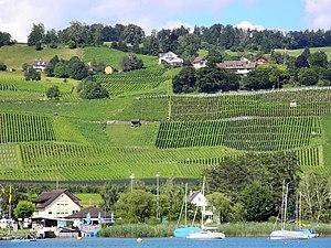 Männedorf - Zürichsee - Dampfschiff Stadt Zürich 2012-07-22 16-46-31 (P7000).JPG