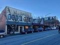 Main Street, Brevard, NC (39704736713).jpg