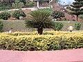Malampuzha Gardens 01.jpg