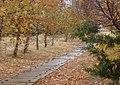 Malatya, Hürriyet Parkı.jpg