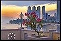 Malaysia Penang- Tanjong Bungah Sunrise 2and (4472333655).jpg