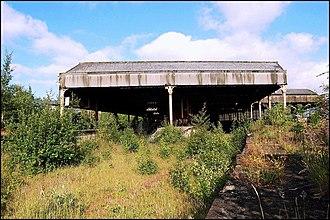 Manchester Mayfield railway station - Overgrown station platforms