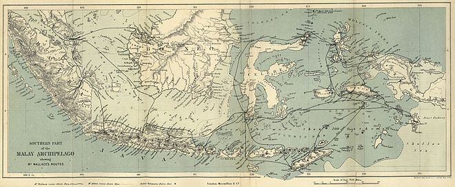 Original map showing Wallace's travels