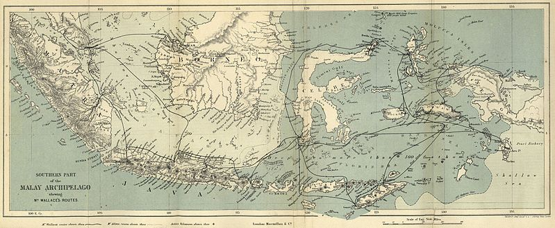 File:Map of Malay Archipelago Wallace 1869.jpg