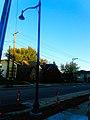 Maple Bluff Street Light - panoramio (3).jpg
