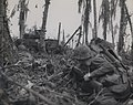 Marines Support Tanks, Peleliu, 1944 (8009931518).jpg