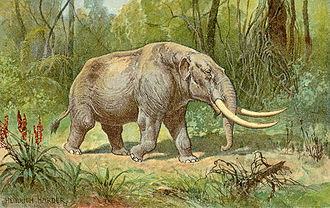 Hiscock Site - Mastodons roamed North America from the Tertiary period until about 10,000 years ago (Painting by Heinrich Harder ca. 1920)