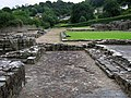 Medieval floor tiling - St Dogmael's abbey - geograph.org.uk - 661245.jpg