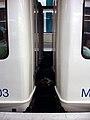 Metro de Marseille - Attelage voitures.jpg