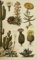 Meyers Konversations-Lexikon - eine Encyklopädie des allgemeinen Wissens (1890) (14577528309).jpg