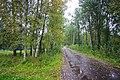Mezinovskiy, Vladimirskaya oblast', Russia, 601525 - panoramio (6).jpg