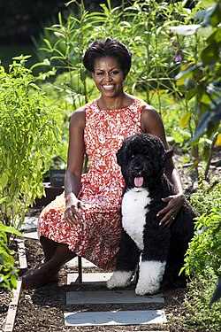 Michelle Obama with Bo official portrait.jpg