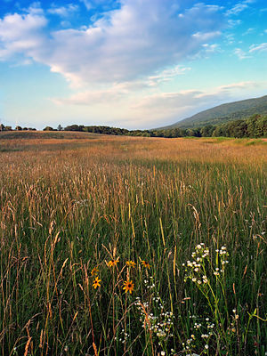 Mifflin Township, Columbia County, Pennsylvania - A Mifflin Township vista
