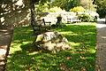 Millenium stone in Chagford (6179).jpg