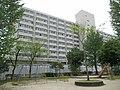 Minamigoyo - panoramio (12).jpg