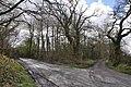 Mine road near Tumble - geograph.org.uk - 1243123.jpg