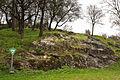 Miozänes-Flachmeer Heldenfinger-Kliff Bohrmuscheln Schwaebische-Alb.jpg