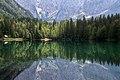 Mirror mirror (50209050731).jpg