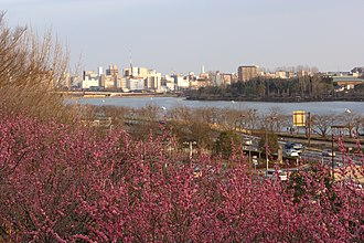 Mito, Ibaraki - City skyline over ume of Kairaku-en