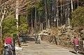 Mitsumine Shrine - 三峯神社 - panoramio (2).jpg