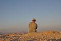 Mitzpe Ramon Deep in thought (7680799336).jpg