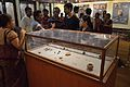 Moghalmari Artefacts - Archaeological Activities Exhibition - Directorate of Archaeology & Museums - West Bengal - Kolkata 2014-09-14 7862.JPG