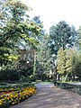 Mokotów - Park Dreszera - alejki.jpg