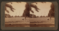 Monument where Lincoln's famous address was made, 979 of the great battle's unknown dead, Gettysburg, from Robert N. Dennis collection of stereoscopic views.png
