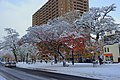 Morning of snow in sapporo - panoramio (1).jpg