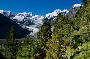Bernina Range - The main summits of the Bernina range above the Morteratsch Glacier