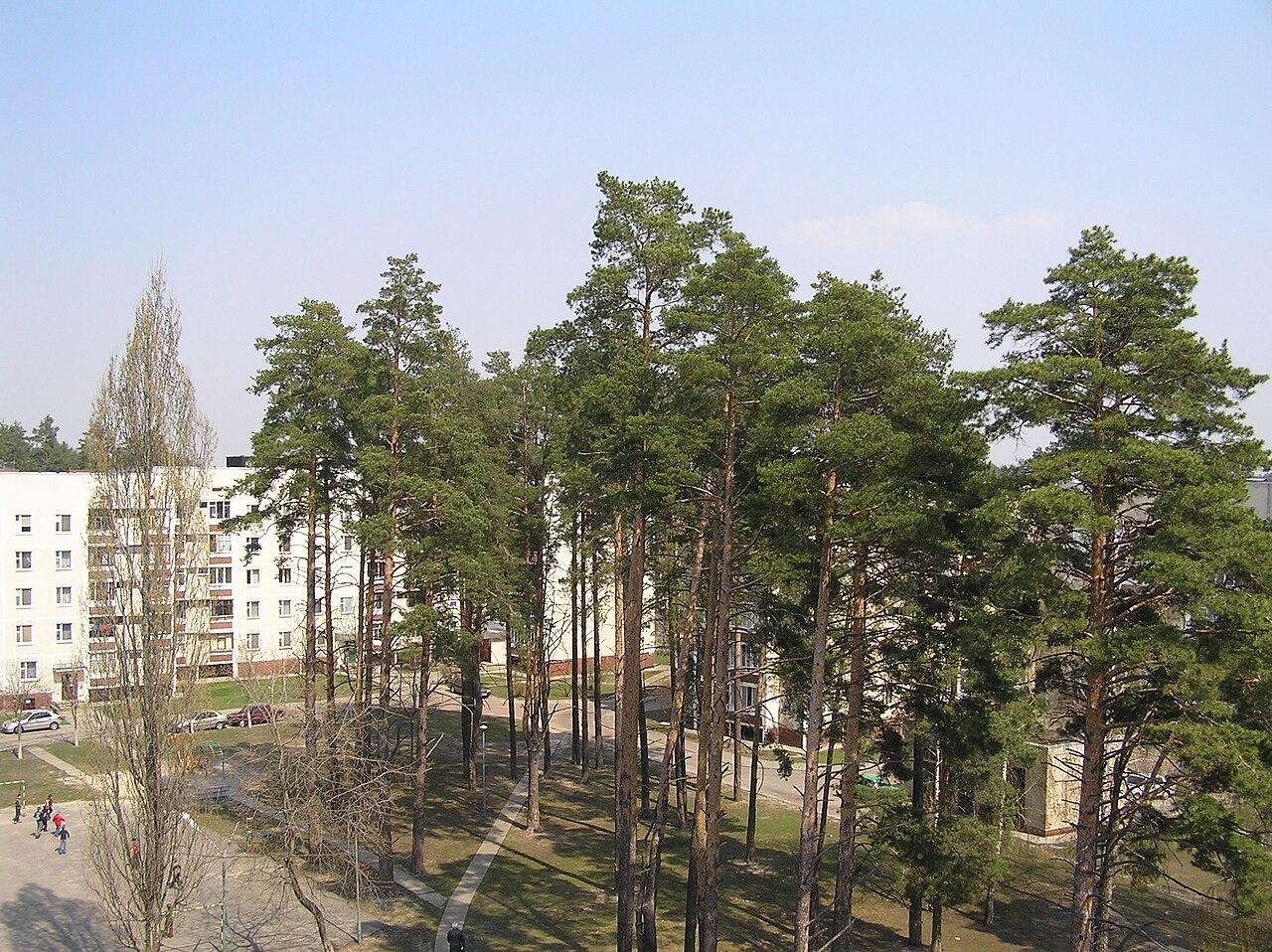 Внутренний двор Московского квартала