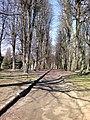 Moskovskiy rayon, Konigsberg, Kaliningradskaya oblast', Russia - panoramio (15).jpg