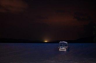 Vieques, Puerto Rico - Bioluminescent Bay at night