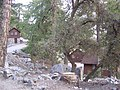 Mount Baldy Zen Center Cabins.jpg