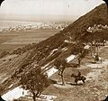 Mount Carmel and the Bay of Haifa (4879670462).jpg