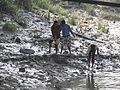 Mudlarkers - Hooghly River 2012-01-14 0882.JPG