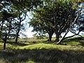 Muirshiel Country Park, Lochwinnoch, Renfrewshire. - panoramio.jpg