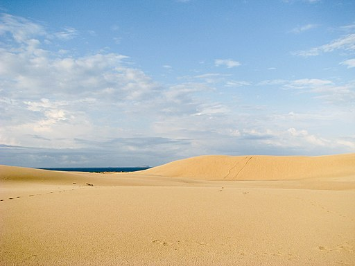 Myall Lakes National Park Dunes