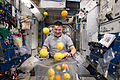 NASA astronaut Kjell Lindgren corrals the supply of fresh fruit that arrived on HTV-5.jpg