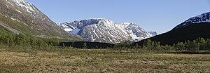 image of Nakkedalen swamp landscape towards south, 2012 June