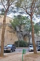 Napoli-2012 by-RaBoe 226.jpg