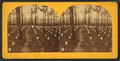 National cemetery, Arlington, Va, by Bell & Bro. (Washington, D.C.) 9.png