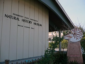 Humboldt State University Natural History Museum - The museum at its original location