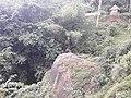 Nature20170629 123617.jpg