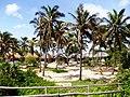 Nature huts, mozambique (9250039606).jpg